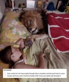 Hilarious: Pets | 28 Everyday Things Tumblr Will Make YouQuestion
