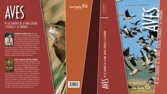 """Libro """"Aves de las lagunas"""" Creado con Adobe Indesign, Illustrator."""