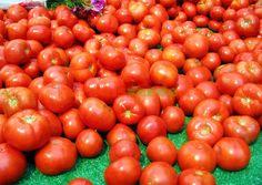 Majoritatea grădinarilor ştiu cum să cultive roşii. Dar niciodată nu strică un secret în plus. Vegetables, Image, Gardening, Agriculture, Plant, Lawn And Garden, Vegetable Recipes, Veggies, Horticulture