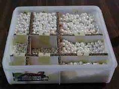 Edible Sugar Pearl instructions