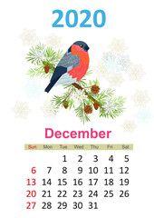 900 Ideas De 12 Meses Del Año Meses Del Año Calendario Calendario Kawaii