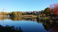 Minneapoliis centennial lake