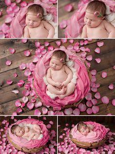 Newborn Professional Photos Seattle pink rose petals