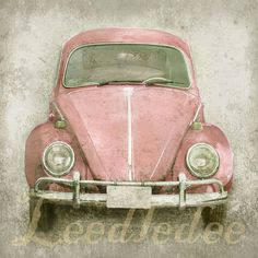 I always wanted one of these cars. Pink Bug Original Photograph by leedledee,