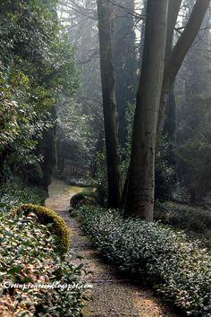 Giardini Giusti (VR) - sentiero