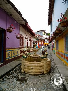 The Quick and Dirty Guide to Visiting Medellin, Colombia Columbia South America, South America Travel, Columbia Medellin, Ecuador, Ocean Photography, Photography Tips, Portrait Photography, Wedding Photography, South American Countries