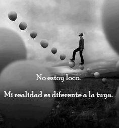 No estoy loco, mi realidad es diferente a la tuya