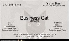 Business Cat is available for business.