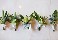Yep.. found what i want! green leaf and succulent boutonniere   Photo by Jessica Burke