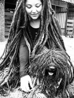 Dreadlocks :)