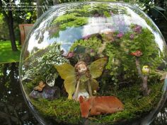 A faerie & her forest friends terrarium!
