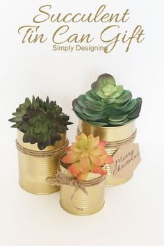 Succulent Tin Can Gift by Simply Designing