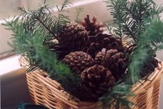 Scented pinecones with vanilla extract instead of cinnamon...deliciously warm