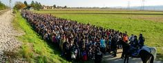 1 million refugees in Europe