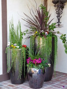 will adorn our home potted plants outdoor ideas love this for my front door.Plants will adorn our home potted plants outdoor ideas love this for my front door. Garden Planters, Succulents Garden, Planting Flowers, Tall Planters, Ceramic Planters, Potted Garden, Potted Plants Patio, Flower Planters, Succulent Wall Gardens