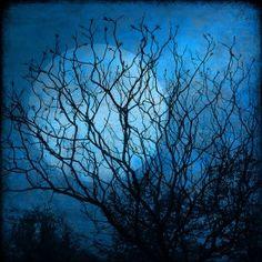 http://earthsky.org/human-world/earthsky-22-blue-moon