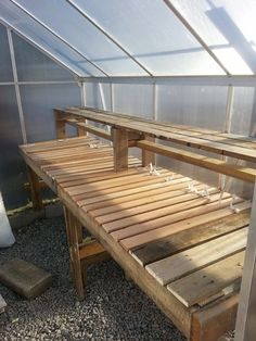 My diy greenhouse shelf made from pallets and bunky boards.