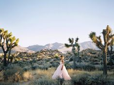 Alexandra-Elise-Photography-Ali-Reed-Joshua-Tree-California-Wedding-Film-Photographer-001