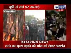 BJP- BSP members stage walkout on sugarcane price issue - India News