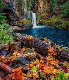 "2,966 Likes, 19 Comments - Fantasy Globe (@fantasy_globe) on Instagram: ""Tokatee Falls, Oregon Tag your friends  Follow @fantasy_globe for best travel&nature pics!…"""