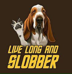 This is so true... they slobber all the time!