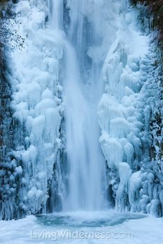 The lower tier of Multnomah Falls, surrounded by ice, plunges 69 feet (21 m), into a frozen splash pool. Oregon's Columbia River Gorge,