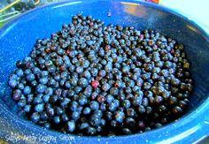 canning homemade blueberry jam  YUM❗️