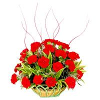 Red Carnation Basket