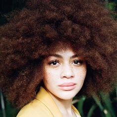 See this Instagram photo by @magdaayuk • Model: @julia.dalia | photographer @josephwolfgangohlert || texture. Afro hair. Natural hair. Color. Kinky hair.