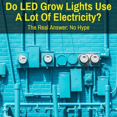 You've heard LED grow lights use less electricity. Without hype, we help you calculate. Power Bill, Grow Room, Plant Lighting, Cannabis Growing, Led Grow, Plant Growth, Do You Really, Neon Signs