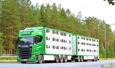 """Gefällt 772 Mal, 1 Kommentare - Trucking Finland (@truckingfinland) auf Instagram: """"Transport C. Sundqvist #scania #scaniatrucks #scaniasuomi #scaniachallenge #scaniav8 #scanias650…"""" Scania V8, Livestock, Finland, Transportation, Trucks, Instagram, Vehicles, Truck"""