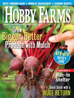 Check out the November/December 2012 issue of Hobby Farms magazine for information on small livestock breeds, buying ATVs and UTVs, mulching your garden and more! Cool Magazine, Hobby Farms, Farm Gardens, Canning Recipes, Gardening Tips, Discount Magazines, Atvs, Livestock, Farming