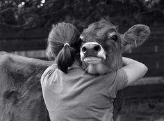 """""""The soul is the same in all living creatures although the body of each is different."""" ~ Hippocrates"""