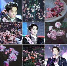 Xiumin + Flowers moodboard
