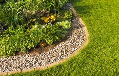 Tired of boring landscaping mulch? Check out these Alternative Mulch Landscaping Ideas Garden Mulch, Mulch Landscaping, Landscaping With Rocks, Front Yard Landscaping, Lawn And Garden, Landscaping Ideas, Landscaping Software, Garden Club, Florida Landscaping