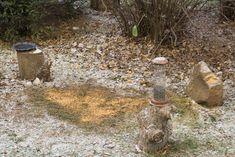 Téli madáretetés | Magyar Madártani és Természetvédelmi Egyesület Stepping Stones, Outdoor Decor, Stair Risers