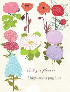 FREE Antique Flower Graphics