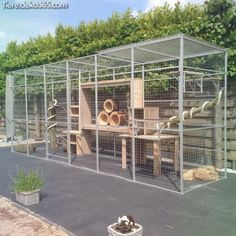 fresh summer cat kennel outdoor perspective : It really is the place where the d… – Tracy – Cat playground outdoor Cage Chat, Cat Kennel, Outdoor Cat Enclosure, Cat Cages, Cat Run, Cat Playground, Outdoor Cats, Cat House Outdoor, Cat Condo