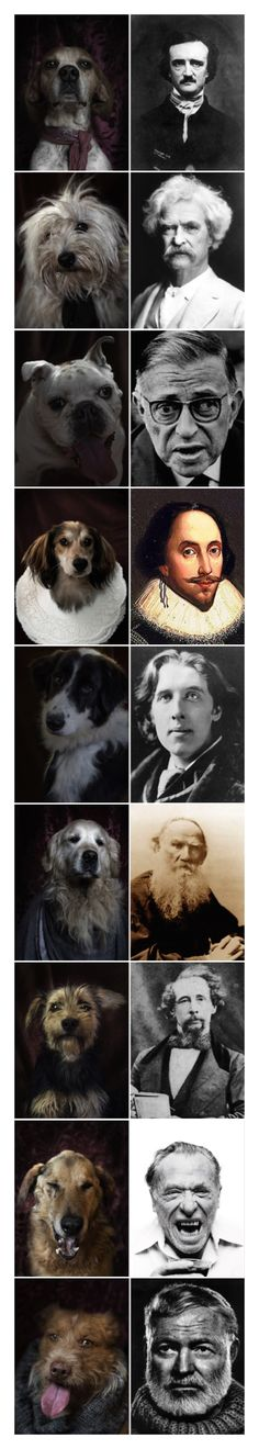 Perros y escritores famosos http://ebookfriendly.com/dogs-famous-writers-pictures/