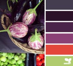 market hues | navy, purples, red, lime | jewelled palette