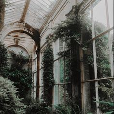 Dark Green Aesthetic, Nature Aesthetic, Plant Aesthetic, Witch Aesthetic, Aesthetic Bedroom, Slytherin Aesthetic, Abandoned Places, Aesthetic Pictures, Aesthetic Wallpapers