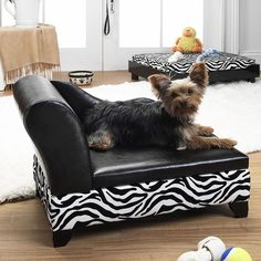 Storage Lounge Pet Bed. Every pampered pet needs one!