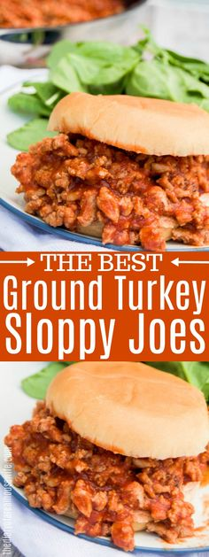 Ground Turkey Sloppy Joes Ground Turkey Sloppy Joes A classic and a family favorite. These Ground Turkey Sloppy Joes are sure to win over even the pickiest eaters, my kids even asked for seconds! Ground Turkey Sloppy Joes, Ground Turkey Enchiladas, Ground Turkey Tacos, Ground Turkey Casserole, Sloppy Joe Recipe With Ground Turkey, Ground Turkey Recipe For Kids, Ground Turkey Pasta, Ground Turkey Meatballs, Ground Meat