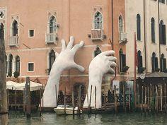 Venice, Bird, Artwork, Animals, Work Of Art, Animales, Auguste Rodin Artwork, Animaux, Venice Italy