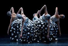 ballet contemporaneo vestuario - Buscar con Google