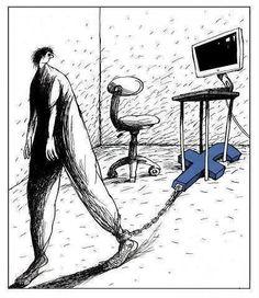 ⚜️ Humor inteligente / Homo stupidus ...