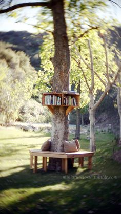 Outdoor library~ Needs doors or a way to make it waterproof on the shelves.  Could use the Pine tree after it's cut as a base.