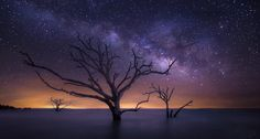 Night at the Boneyard Beach, Edisto Island, South Carolina (This is a composite of two photos)