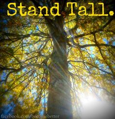 Stand tall quote via www.Facebook.com/... and www.BecomeBetter.tv