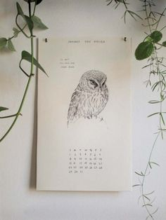 The Wild Unknown Birds + Bunnies 2012 Calendar.  Images matched to the lyrics of songs by Neil Young, Yoko Ono, Bob Marley + Van Halen. $30  #owls #birds #bunnies #rabbits